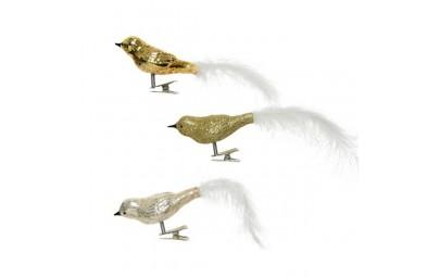 Ptaszek z piórkiem na...