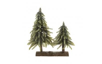 Drzewka małe zielone na...
