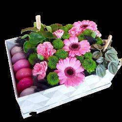 Flowerbox - gerbery