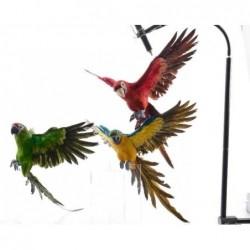 Papuga 18x52x60cm