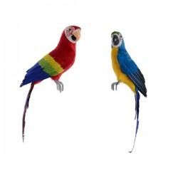 Papuga na drucie mix...