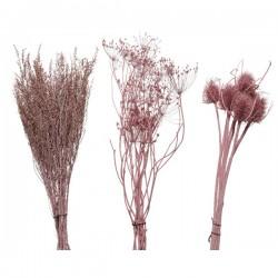 Kwiaty suszone jasno różowe