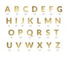 Baner Alfabet złoty 2