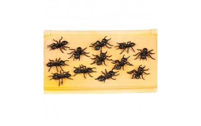 Sztuczne mrówki plastikowe...