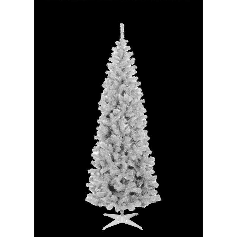 Choinka jodła karolina biała 180cm