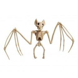 Szkielet nietoperza 30x16cm