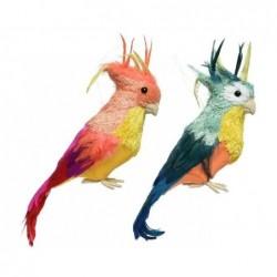 Papuga kolorowa 9x10x33cm