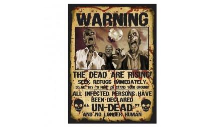 Tabliczka Warning 28x38cm 2...