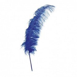 Pawie pióro niebieskie 50cm