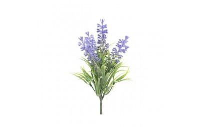 Lawenda pęczek 4 kwiatów...
