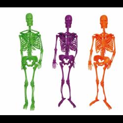 Szkielet lateksowy mix kolorów