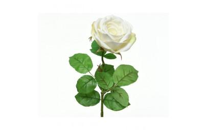 Róża gałązka XL biała
